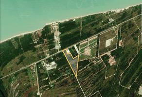 Foto de terreno habitacional en venta en  , ciudad del carmen centro, carmen, campeche, 14083605 No. 01