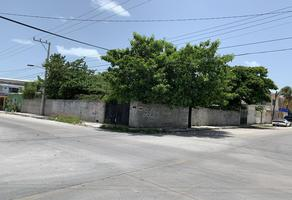Foto de terreno habitacional en venta en  , ciudad del carmen (ciudad del carmen), carmen, campeche, 0 No. 01