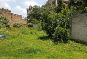 Foto de terreno habitacional en venta en  , ciudad granja, zapopan, jalisco, 13776491 No. 01