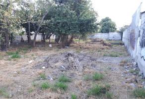Foto de terreno comercial en renta en  , ciudad guadalupe centro, guadalupe, nuevo león, 10751586 No. 01