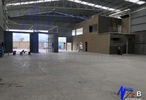 Foto de nave industrial en renta en  , ciudad industrial, león, guanajuato, 11829207 No. 01