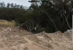 Foto de terreno habitacional en venta en  , ciudad madero centro, ciudad madero, tamaulipas, 11699314 No. 01