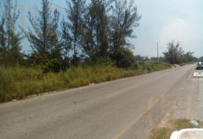 Foto de terreno habitacional en venta en  , ciudad madero centro, ciudad madero, tamaulipas, 0 No. 01