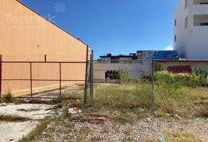 Foto de terreno habitacional en renta en  , ciudad madero centro, ciudad madero, tamaulipas, 0 No. 01