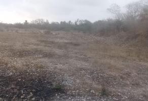 Foto de terreno habitacional en venta en  , ciudad mante centro, el mante, tamaulipas, 10473109 No. 01