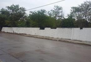 Foto de terreno habitacional en renta en  , ciudad mante centro, el mante, tamaulipas, 11925771 No. 01