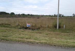 Foto de terreno habitacional en venta en  , ciudad mante centro, el mante, tamaulipas, 0 No. 01