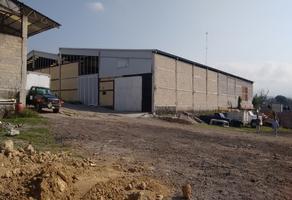Foto de nave industrial en renta en  , civac 2a sección, jiutepec, morelos, 14203413 No. 01