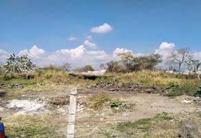 Foto de terreno industrial en venta en  , civac, jiutepec, morelos, 0 No. 01
