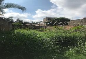 Foto de terreno habitacional en venta en clavel , salvador portillo lópez, san pedro tlaquepaque, jalisco, 5853092 No. 01