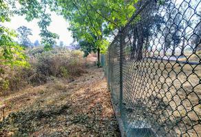 Foto de terreno habitacional en venta en  , club campestre, zacapu, michoacán de ocampo, 0 No. 01