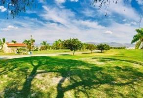 Foto de terreno habitacional en venta en  , club de golf, cuernavaca, morelos, 14948473 No. 01