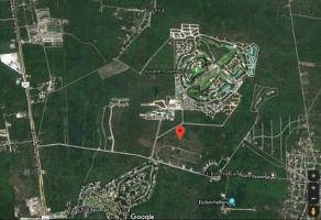 Foto de terreno comercial en venta en  , club de golf la ceiba, mérida, yucatán, 0 No. 01