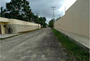 Foto de terreno industrial en venta en cnc , alfredo v bonfil, benito juárez, quintana roo, 6485132 No. 01