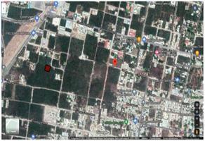 Foto de terreno habitacional en venta en coahuila s/n colegios , alfredo v bonfil, benito juárez, quintana roo, 0 No. 01