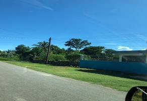 Foto de terreno habitacional en venta en coahuila sur , calderitas, othón p. blanco, quintana roo, 0 No. 01