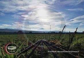 Foto de terreno habitacional en venta en  , cocoyoc, yautepec, morelos, 18475641 No. 01