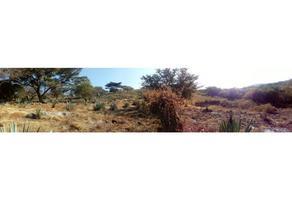 Foto de terreno habitacional en venta en  , cocoyotla, coatlán del río, morelos, 0 No. 01