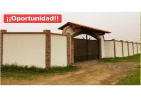 Foto de rancho en venta en  , cofradía de suchitlán, comala, colima, 0 No. 01