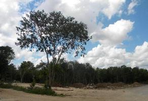 Foto de terreno habitacional en renta en  , colegios, benito juárez, quintana roo, 10507142 No. 01