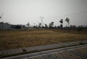 Foto de terreno habitacional en venta en colima 12, san bernardino tlaxcalancingo, san andrés cholula, puebla, 0 No. 01