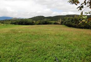 Foto de terreno habitacional en venta en  , colinas de santa fe, colima, colima, 8863377 No. 01