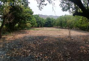 Foto de terreno industrial en venta en colonia apozonalco , xoxocotla, puente de ixtla, morelos, 9190735 No. 01