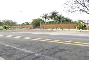 Foto de terreno habitacional en venta en colonia centro , puente de ixtla centro, puente de ixtla, morelos, 16800787 No. 01
