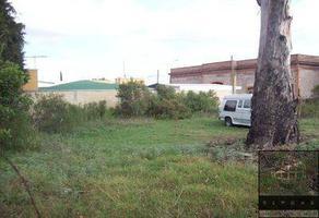 Foto de terreno comercial en renta en colonia san jose actipan , maple, san andrés cholula, puebla, 15028957 No. 01