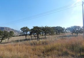 Foto de terreno habitacional en venta en carretera 12.9 kilometro colotlan , colotlan centro, colotlán, jalisco, 2828203 No. 01