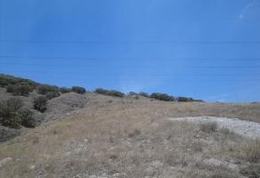 Foto de terreno habitacional en venta en  , colotlan centro, colotlán, jalisco, 3055332 No. 03