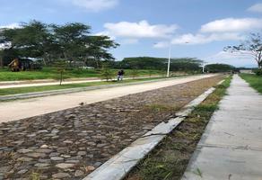 Foto de terreno habitacional en venta en  , comala, comala, colima, 0 No. 01