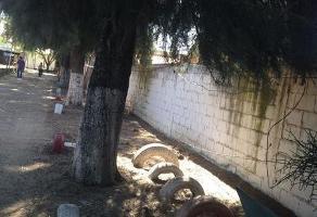 Foto de terreno habitacional en venta en  , comanjilla, silao, guanajuato, 7001671 No. 03