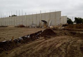 Foto de nave industrial en renta en  , comercial fimex, altamira, tamaulipas, 11288813 No. 01