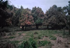 Foto de terreno habitacional en venta en  , compostela centro, compostela, nayarit, 10662323 No. 01