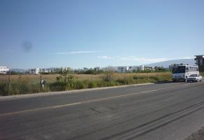 Foto de terreno habitacional en venta en concepción del valle , san jose del valle, tlajomulco de zúñiga, jalisco, 14375143 No. 01