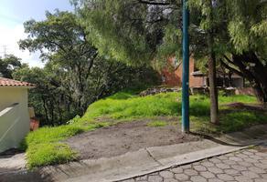 Foto de terreno industrial en venta en  , condado de sayavedra, atizapán de zaragoza, méxico, 13363131 No. 01