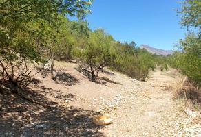 Foto de terreno habitacional en venta en congregación de las boquillas , los lirios, arteaga, coahuila de zaragoza, 0 No. 01