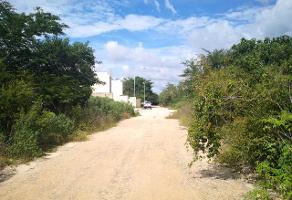 Foto de terreno industrial en venta en conicida , cholul, mérida, yucatán, 9807455 No. 01
