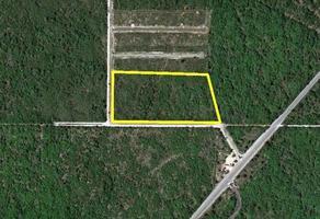 Foto de terreno comercial en venta en  , conkal, conkal, yucatán, 14279045 No. 01