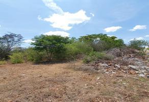 Foto de terreno comercial en venta en  , cholul, mérida, yucatán, 20235925 No. 01