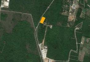 Foto de terreno habitacional en venta en conkal , san francisco de asís, conkal, yucatán, 14178298 No. 01