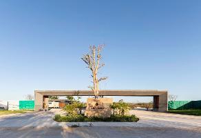 Foto de terreno habitacional en venta en conkal whi10887, conkal, conkal, yucatán, 0 No. 01