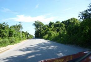 Foto de terreno industrial en venta en conocida 1304, supermanzana 28, benito juárez, quintana roo, 10565351 No. 01