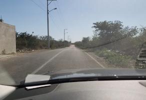 Foto de terreno industrial en venta en conocida 178, cholul, mérida, yucatán, 9612895 No. 01