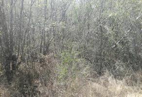 Foto de terreno industrial en venta en conocida , cholul, mérida, yucatán, 9077794 No. 01