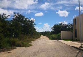 Foto de terreno industrial en venta en conocida , cholul, mérida, yucatán, 9807673 No. 01