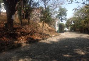 Foto de terreno habitacional en venta en conocida , lomas de jiutepec, jiutepec, morelos, 0 No. 01