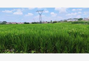 Foto de terreno industrial en venta en conocida , temixco centro, temixco, morelos, 16321349 No. 01