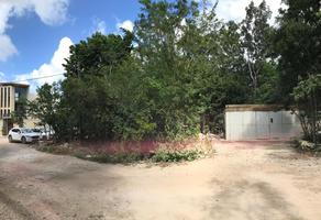 Foto de terreno industrial en venta en conocido , la veleta, tulum, quintana roo, 12383605 No. 01